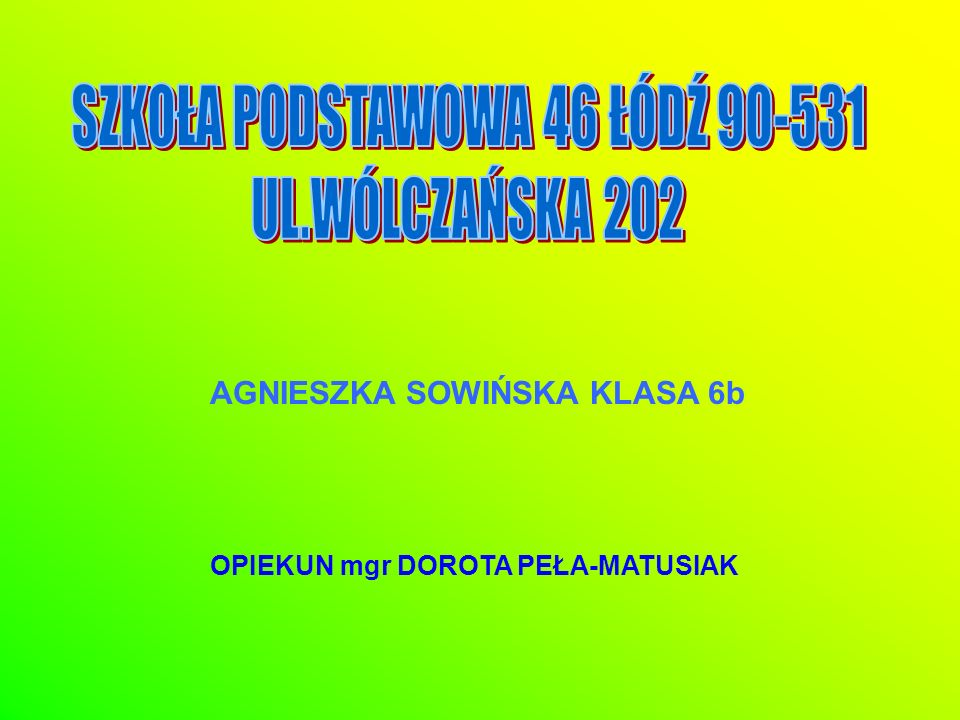 SZKOŁA PODSTAWOWA 46 ŁÓDŹ 90-531
