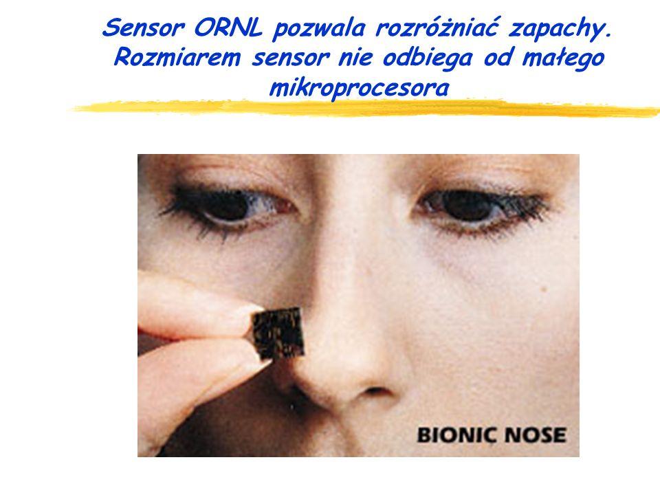 Sensor ORNL pozwala rozróżniać zapachy