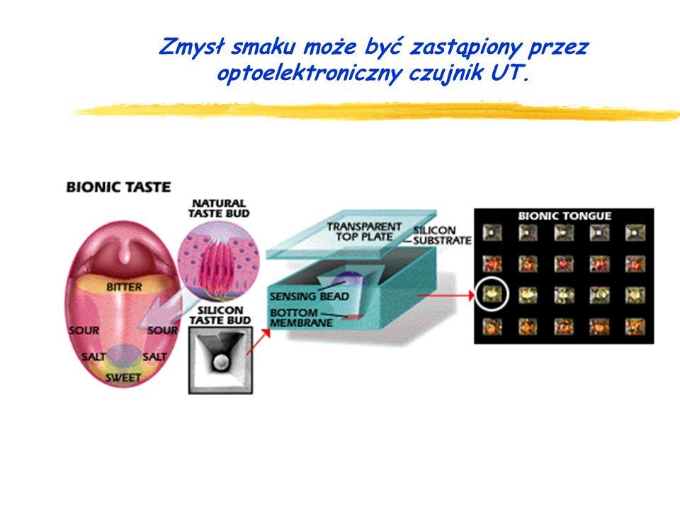 Zmysł smaku może być zastąpiony przez optoelektroniczny czujnik UT.