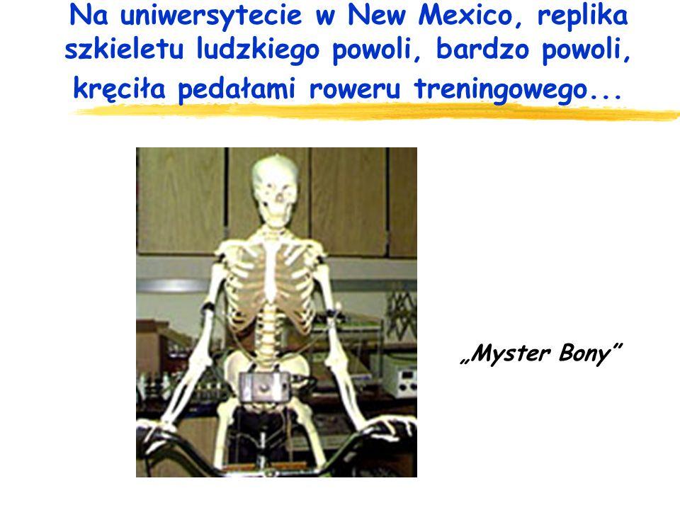 Na uniwersytecie w New Mexico, replika szkieletu ludzkiego powoli, bardzo powoli, kręciła pedałami roweru treningowego...