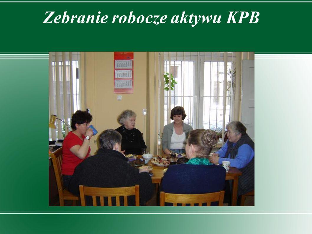 Zebranie robocze aktywu KPB