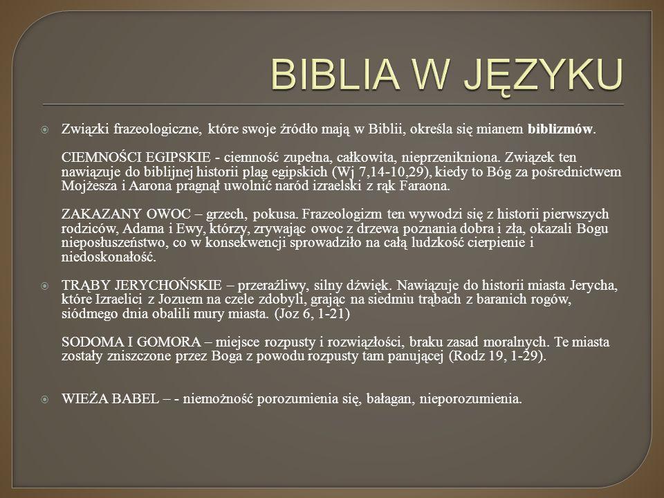 BIBLIA W JĘZYKU