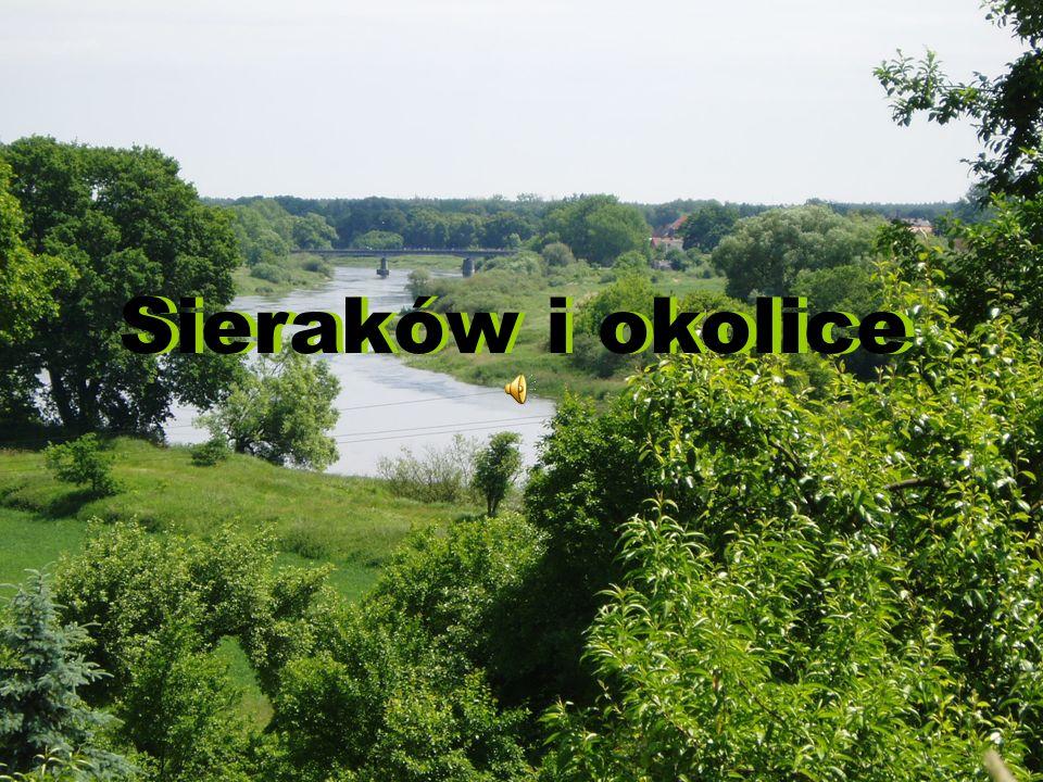 Sieraków i okolice Sieraków i okolice