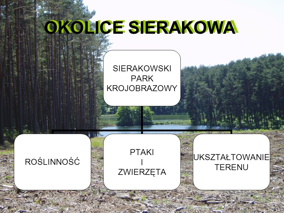OKOLICE SIERAKOWA OKOLICE SIERAKOWA