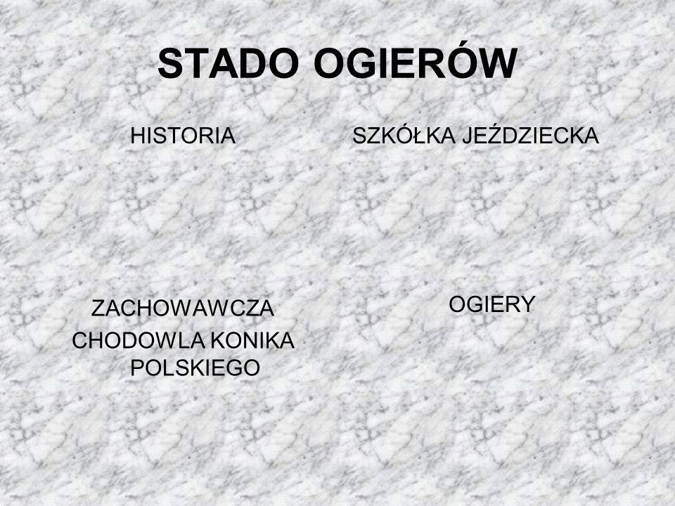 ZACHOWAWCZA CHODOWLA KONIKA POLSKIEGO