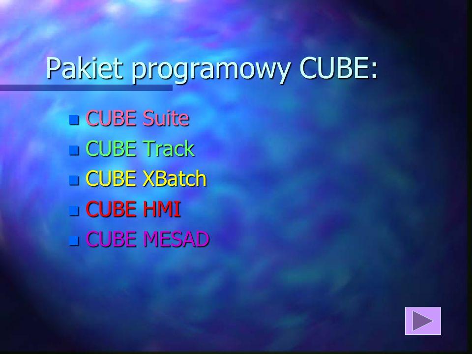 Pakiet programowy CUBE: