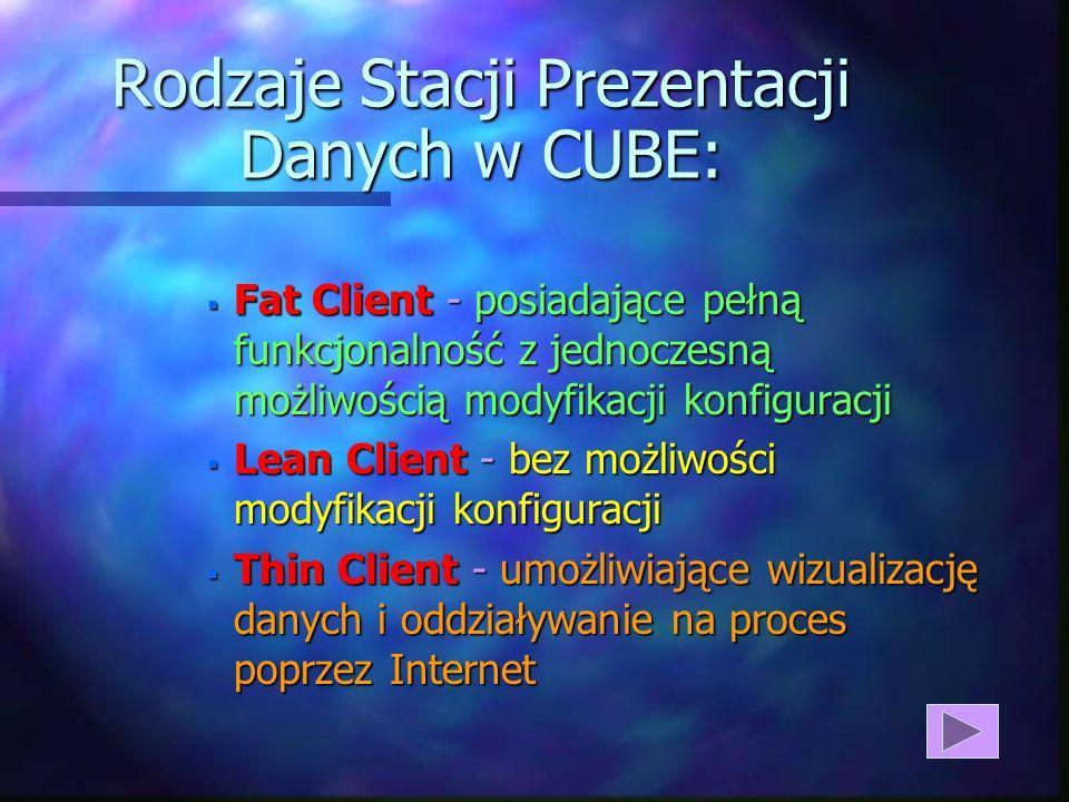 Rodzaje Stacji Prezentacji Danych w CUBE:
