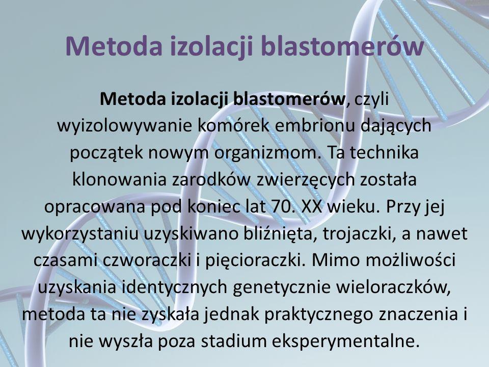 Metoda izolacji blastomerów