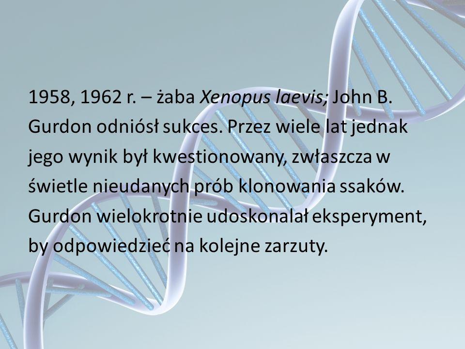 1958, 1962 r. – żaba Xenopus laevis; John B. Gurdon odniósł sukces