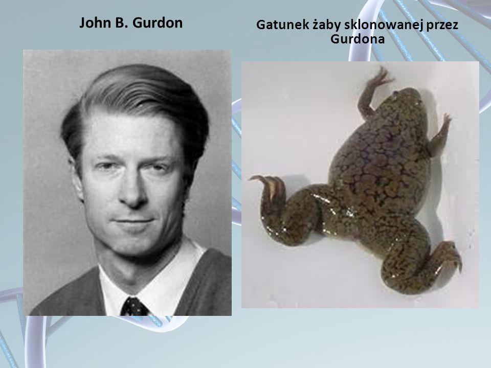 Gatunek żaby sklonowanej przez Gurdona