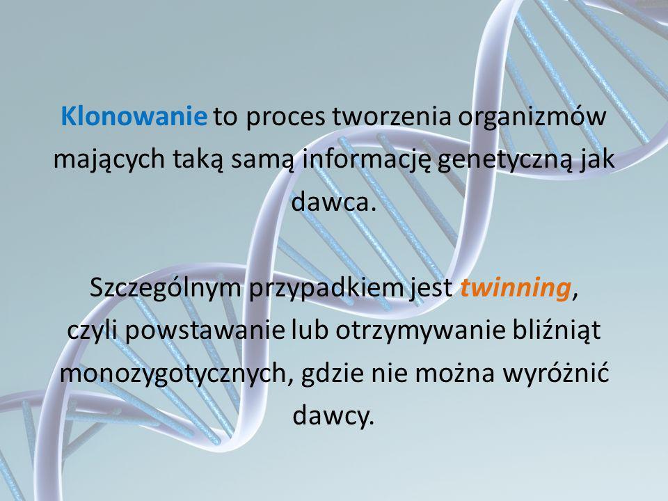 Klonowanie to proces tworzenia organizmów mających taką samą informację genetyczną jak dawca.