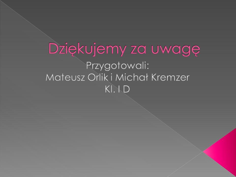 Przygotowali: Mateusz Orlik i Michał Kremzer Kl. I D