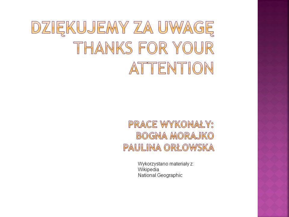 Dziękujemy za uwagę Thanks for your attention prace WYKONAŁY: Bogna Morajko Paulina Orłowska