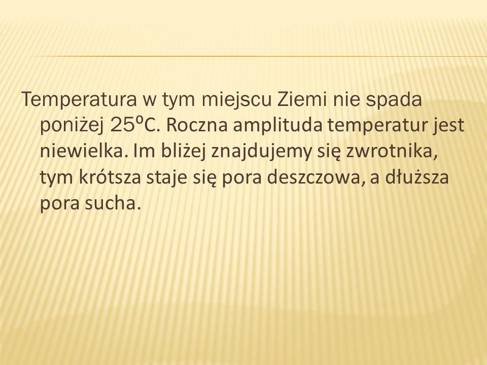 Temperatura w tym miejscu Ziemi nie spada poniżej 25⁰C