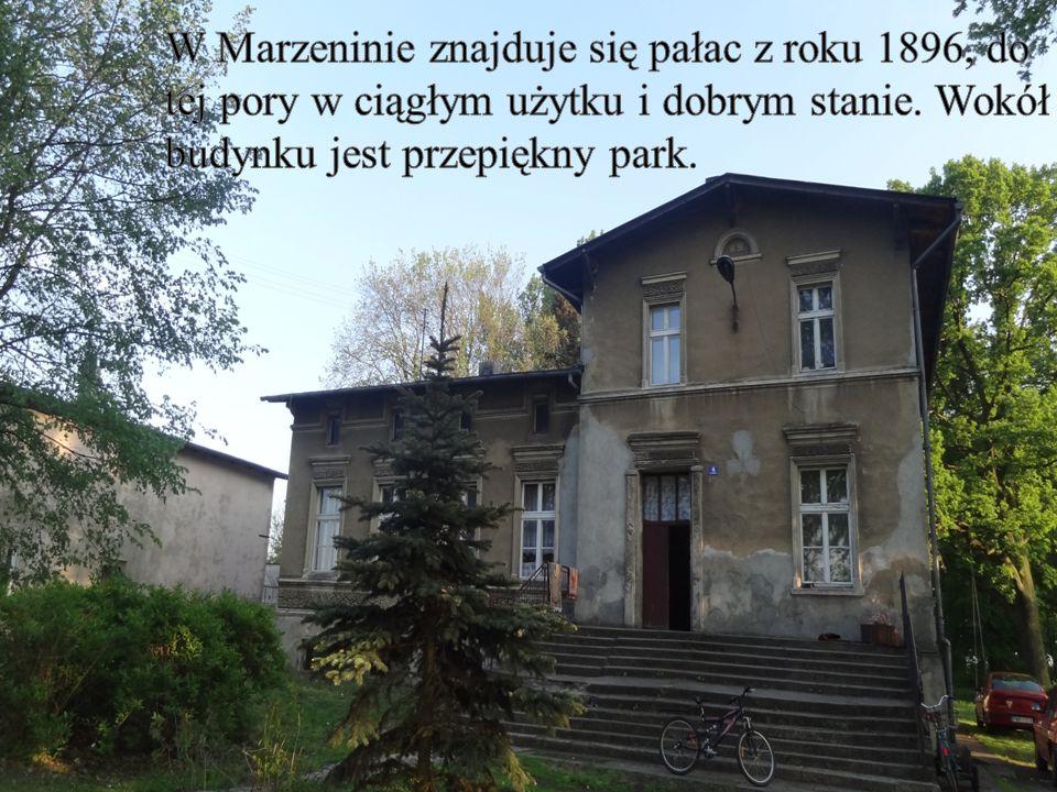 W Marzeninie znajduje się pałac z roku 1896, do tej pory w ciągłym użytku i dobrym stanie.