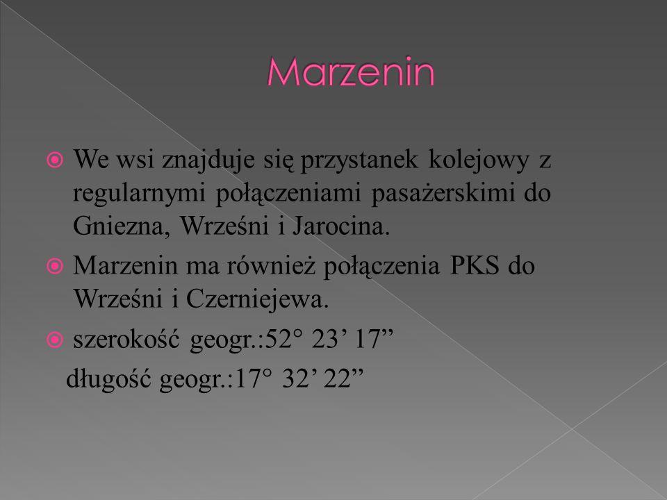 Marzenin We wsi znajduje się przystanek kolejowy z regularnymi połączeniami pasażerskimi do Gniezna, Wrześni i Jarocina.