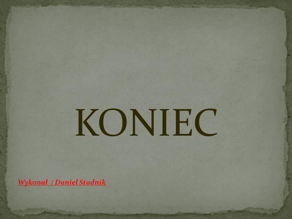KONIEC Wykonał : Daniel Stadnik
