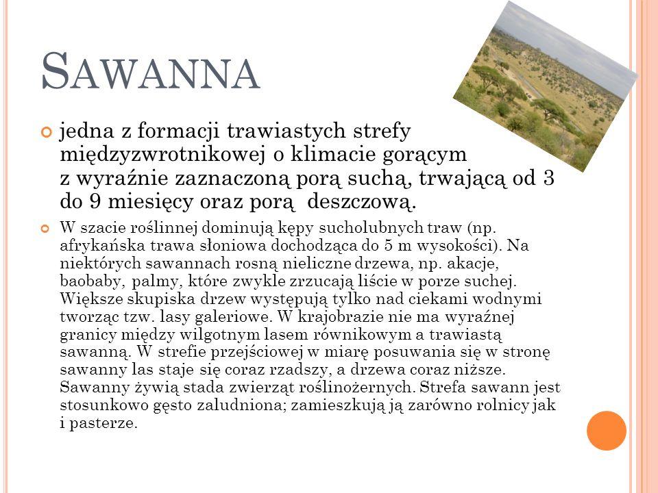 Sawanna