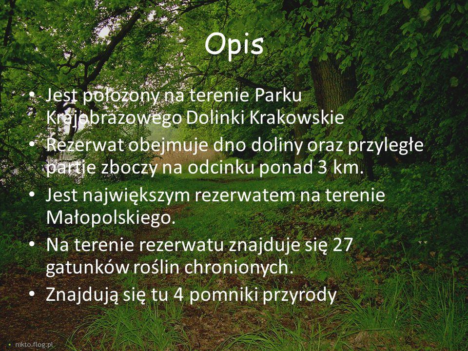 Opis Jest położony na terenie Parku Krajobrazowego Dolinki Krakowskie