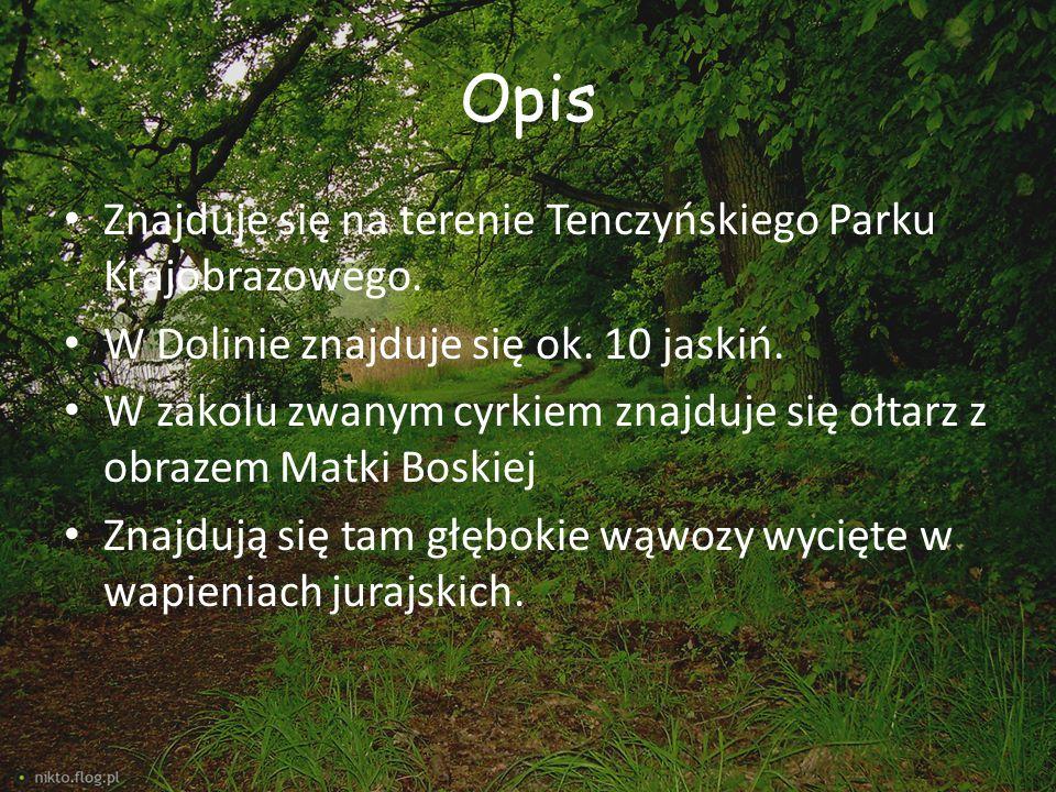 Opis Znajduje się na terenie Tenczyńskiego Parku Krajobrazowego.