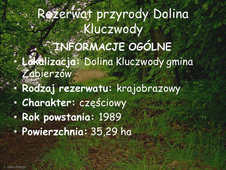 Rezerwat przyrody Dolina Kluczwody