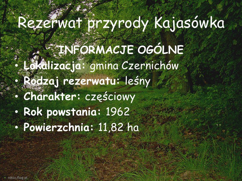 Rezerwat przyrody Kajasówka