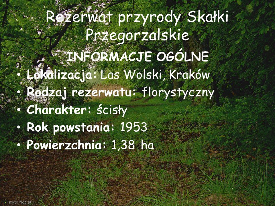 Rezerwat przyrody Skałki Przegorzalskie
