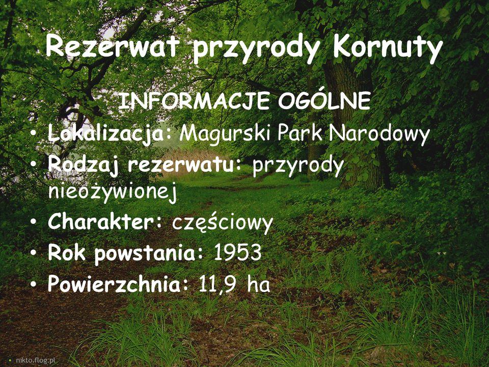 Rezerwat przyrody Kornuty