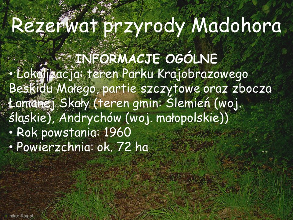 Rezerwat przyrody Madohora