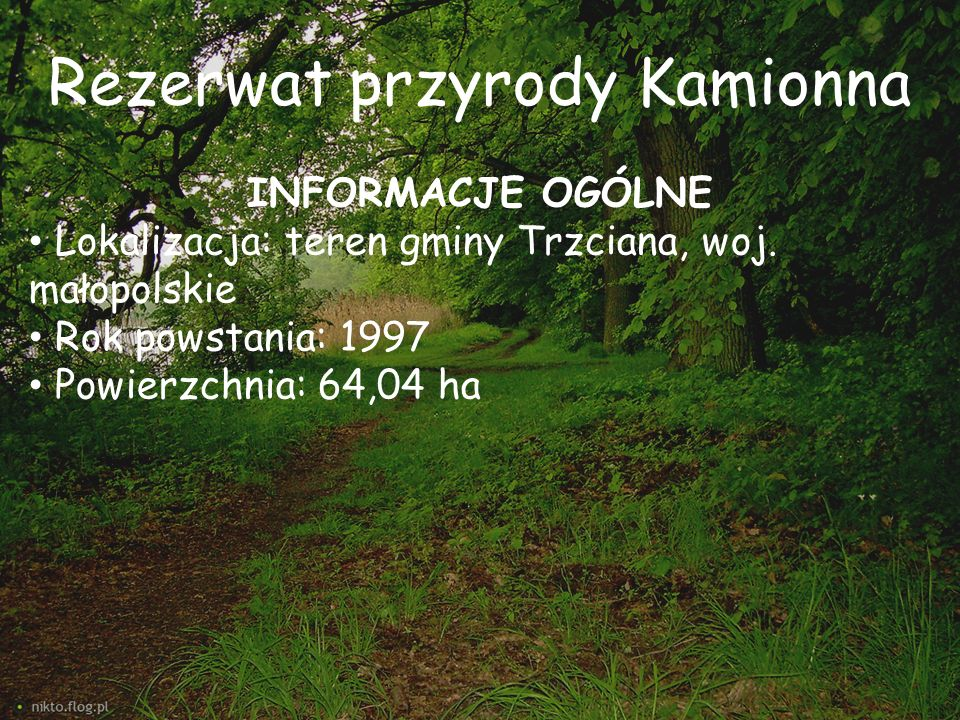Rezerwat przyrody Kamionna