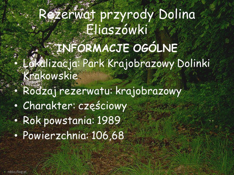 Rezerwat przyrody Dolina Eliaszówki