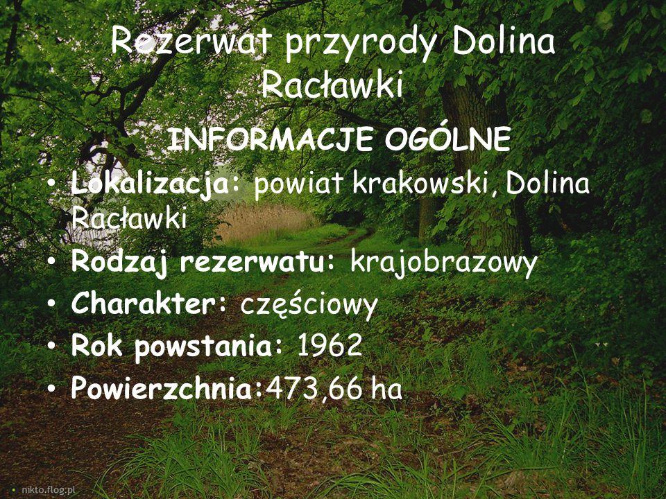 Rezerwat przyrody Dolina Racławki