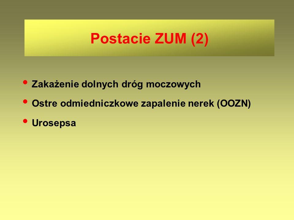 Postacie ZUM (2) • Zakażenie dolnych dróg moczowych. • Ostre odmiedniczkowe zapalenie nerek (OOZN)