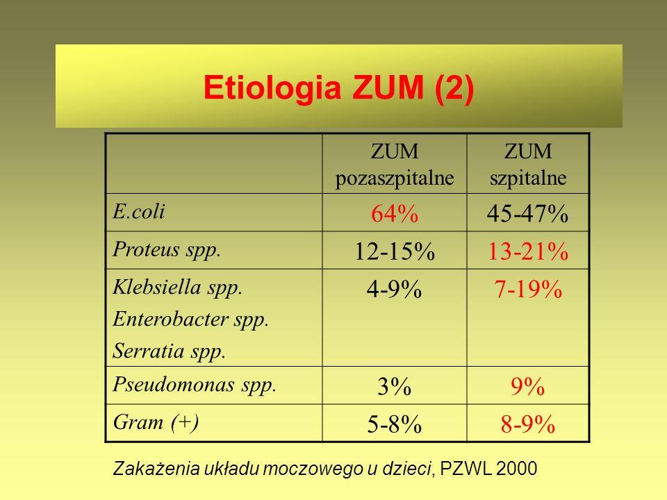 Etiologia ZUM (2) 64% 45-47% 12-15% 13-21% 4-9% 7-19% 3% 9% 5-8% 8-9%