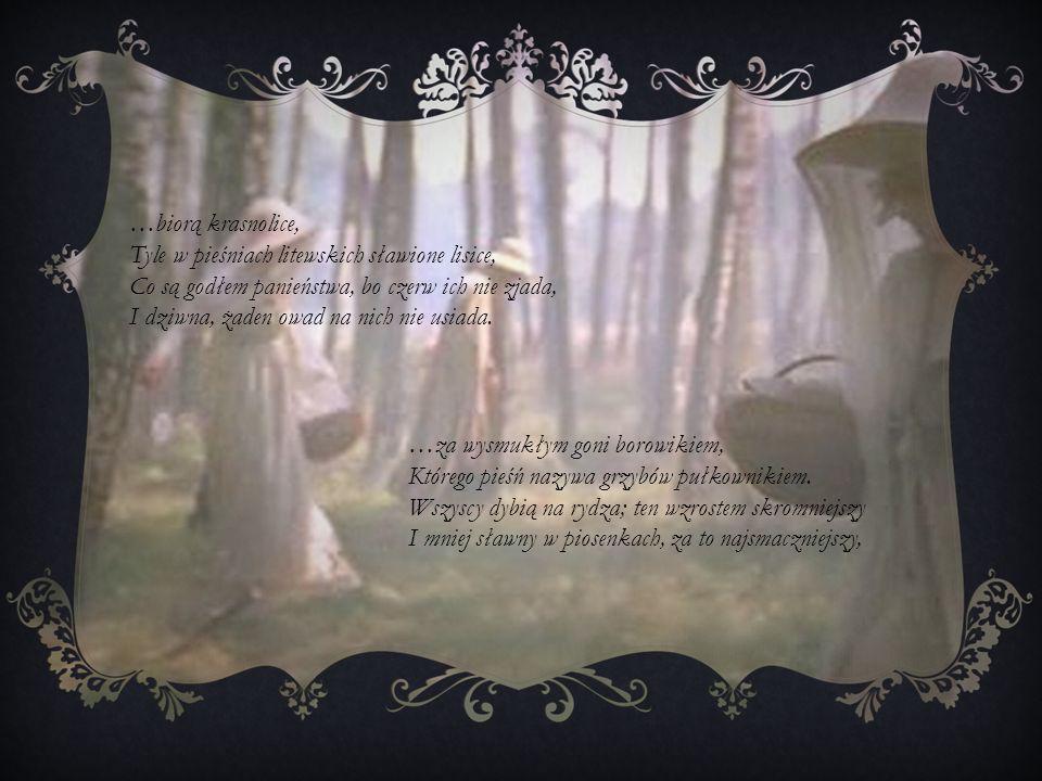 …biorą krasnolice,Tyle w pieśniach litewskich sławione lisice, Co są godłem panieństwa, bo czerw ich nie zjada,