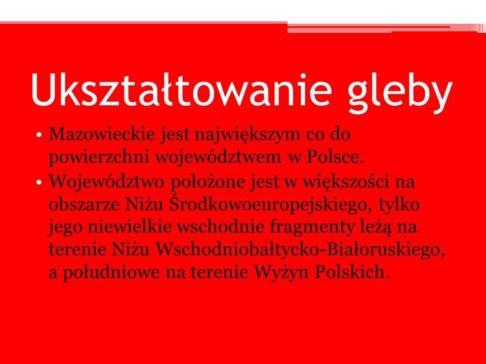 Ukształtowanie gleby Mazowieckie jest największym co do powierzchni województwem w Polsce.