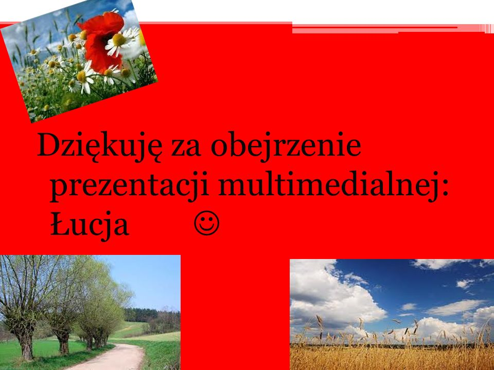 Dziękuję za obejrzenie prezentacji multimedialnej: Łucja 