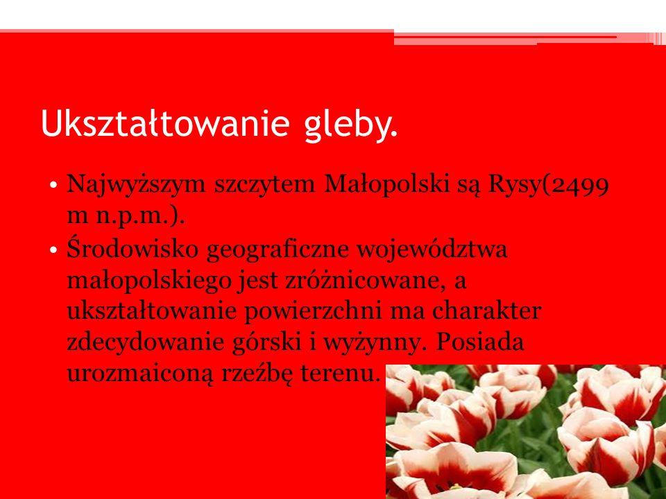 Ukształtowanie gleby. Najwyższym szczytem Małopolski są Rysy(2499 m n.p.m.).