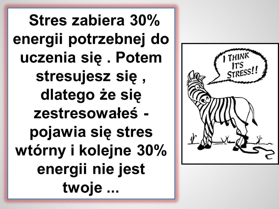 Stres zabiera 30% energii potrzebnej do uczenia się