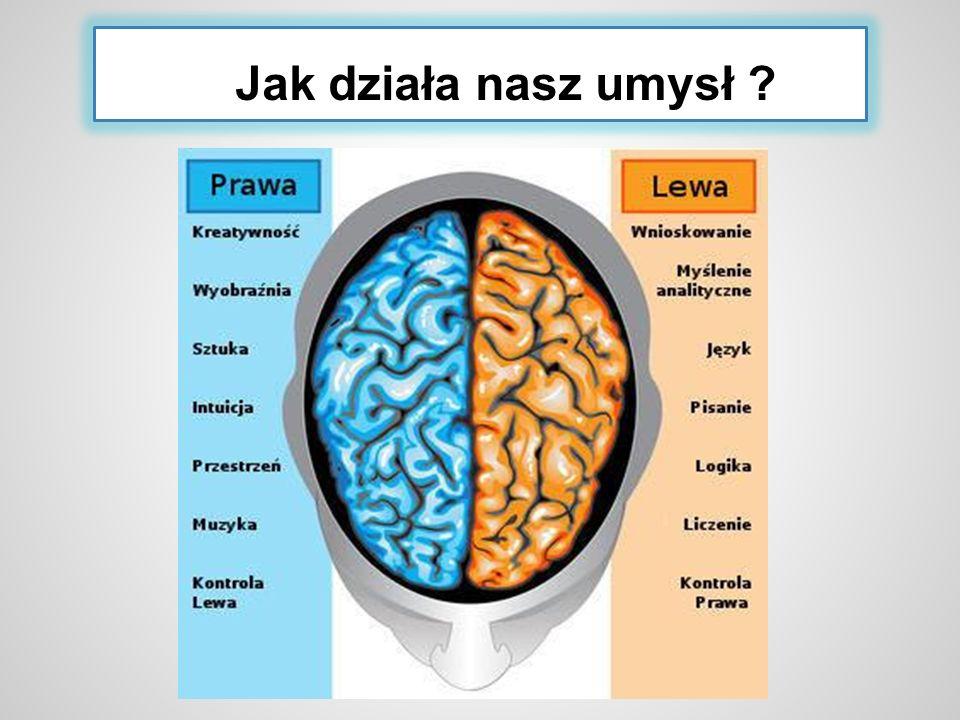 Jak działa nasz umysł