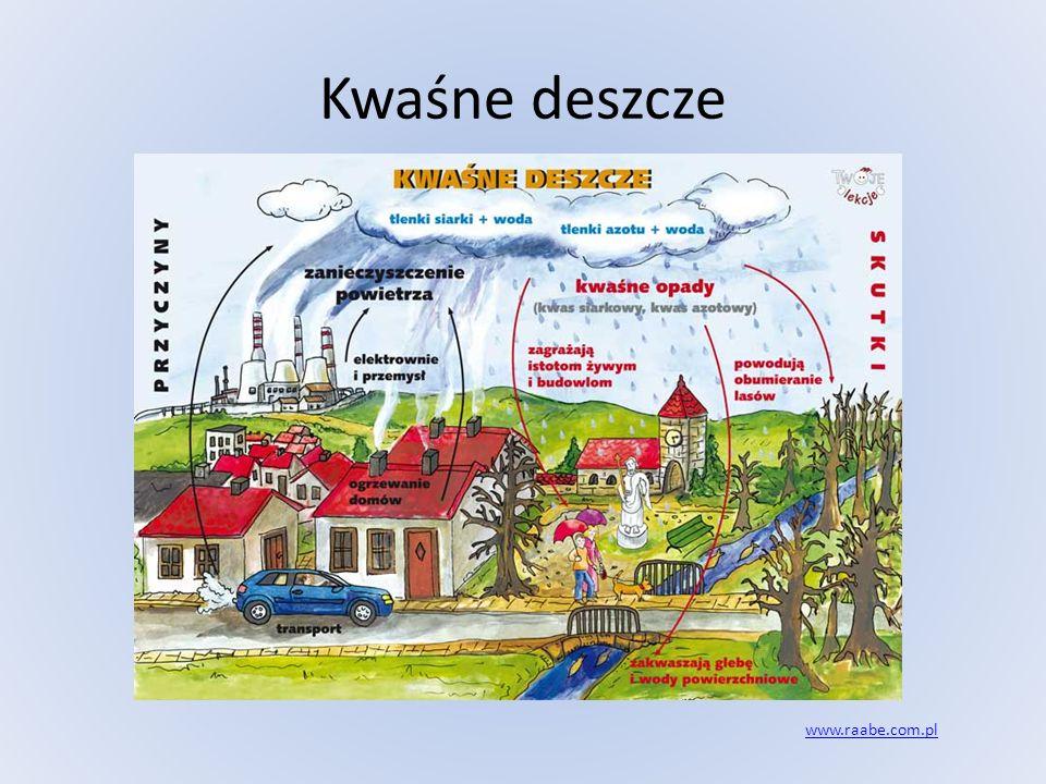 Kwaśne deszcze www.raabe.com.pl