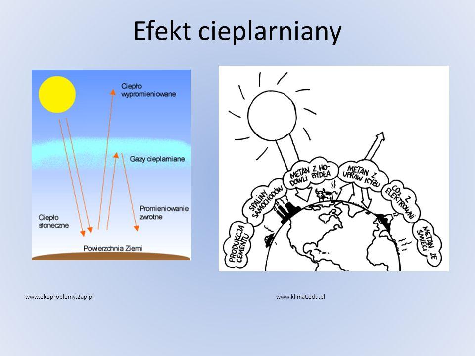 Efekt cieplarniany www.ekoproblemy.2ap.pl www.klimat.edu.pl