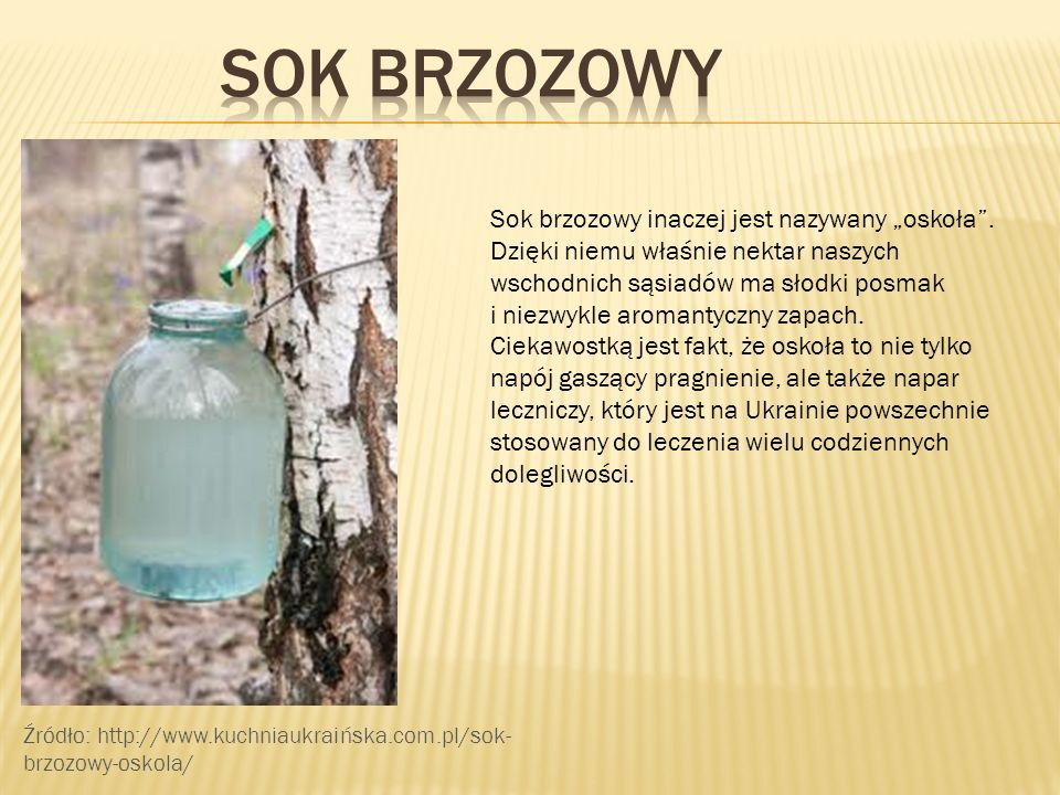 """SOK BRZOZOWY Sok brzozowy inaczej jest nazywany """"oskoła ."""