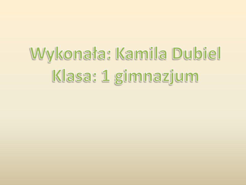 Wykonała: Kamila Dubiel