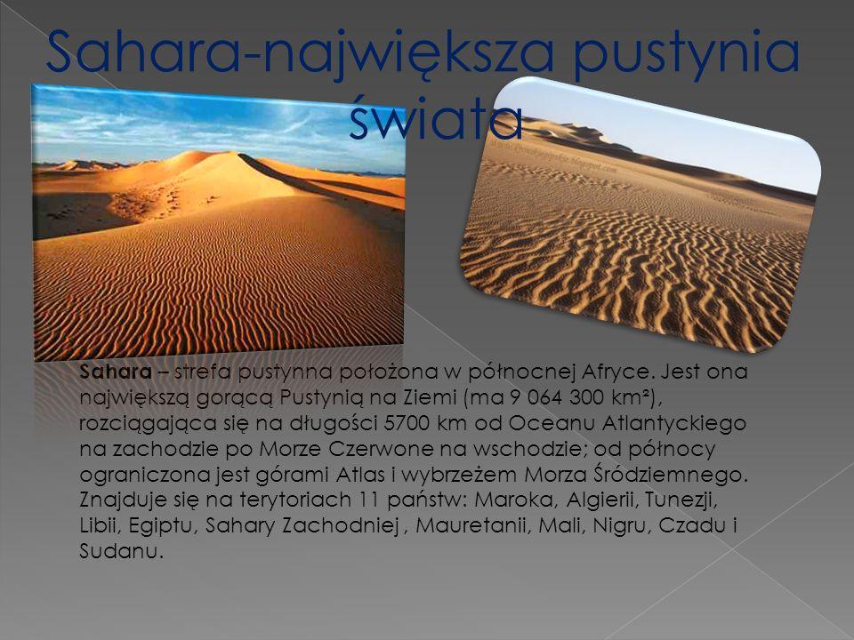 Sahara-największa pustynia świata