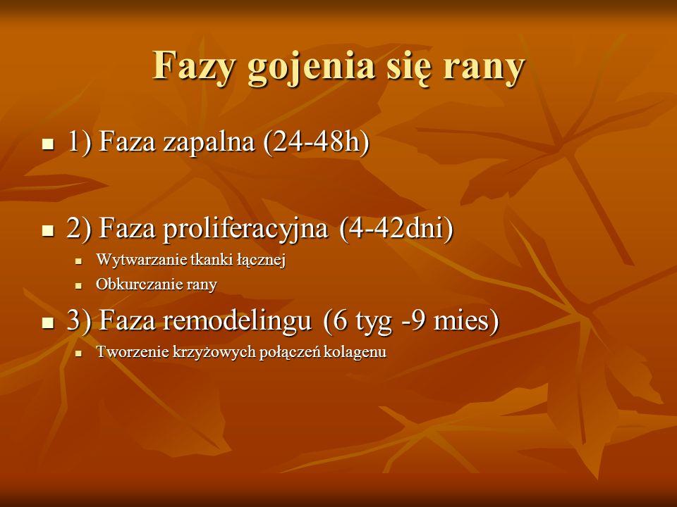 Fazy gojenia się rany 1) Faza zapalna (24-48h)