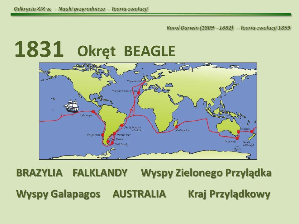 1831 Okręt BEAGLE BRAZYLIA FALKLANDY Wyspy Zielonego Przylądka