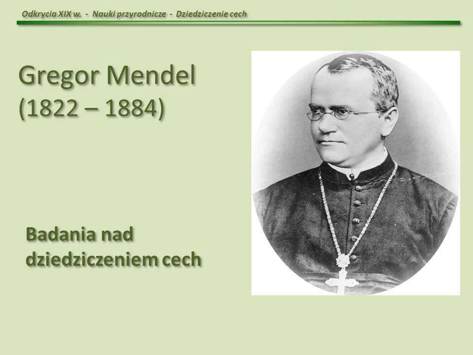 Gregor Mendel (1822 – 1884) Badania nad dziedziczeniem cech