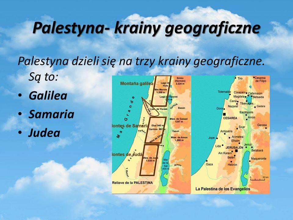 Palestyna- krainy geograficzne
