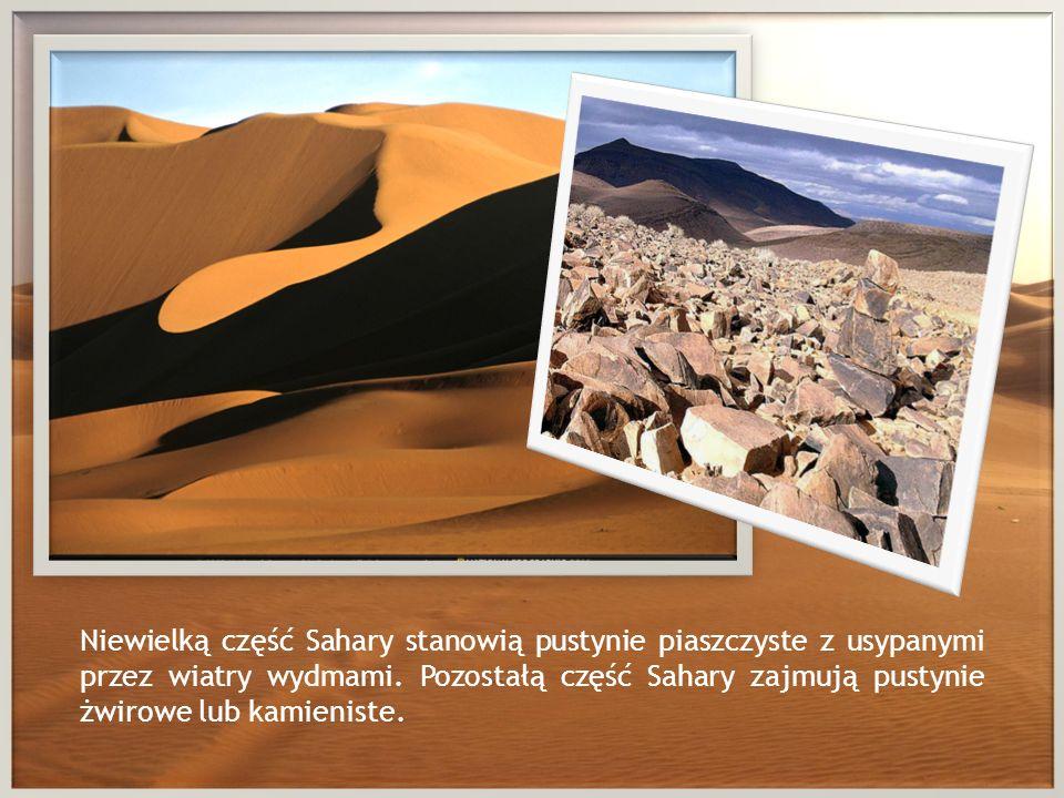 Niewielką część Sahary stanowią pustynie piaszczyste z usypanymi przez wiatry wydmami.